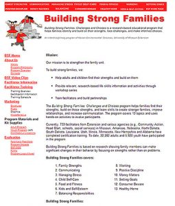 Snapshot of Building Strong Families website